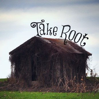 Take Root Thumbnail