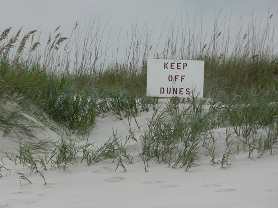 """Keep Off Dunes"" Photography taken by Jessica of SheekGeek"