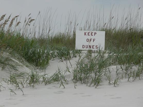 """Keep Off Dunes"" Photography taken by Jessica of SheekGeek"