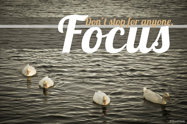 Focus-Don't-Stop
