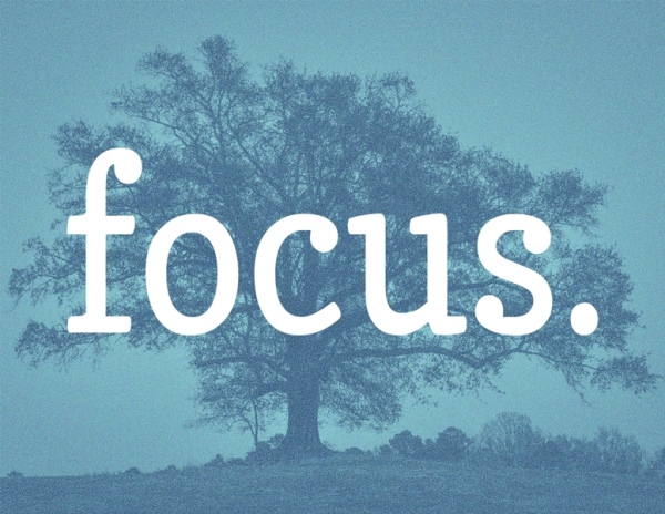 Focus-Tree-Blue-Back