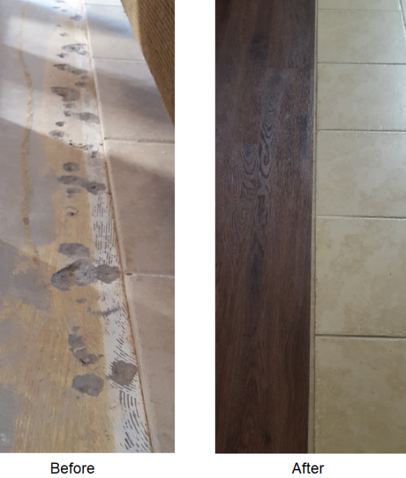 Hardwood To Tile Transitions